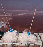 Camargue-Aigues Mortes. Le vasche artificiali dove si raccoglie il Fleur de sal e caratterizzate da una colorazione rosa. Nella foto la raccolta del Fleur de sal che avviene in luglio. Si rompe a mano la crosta salina che viene portata vers riva formando dei cumuli di sale.