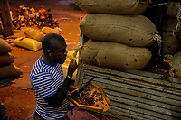 A man tests a sample from the sacks of cocoa beans being offloaded from a truck at an agricultural products company, prior to being transported to the port of San-Pedro.