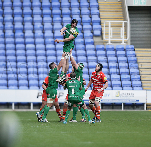 01.11.2014.  Reading, England.  LV Cup Rugby. London Irish versus Leicester Tigers. Kieran Low wins and feeds line out ball.