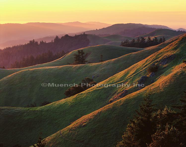 Mt. Tamalpais SP  CALIFORNIA