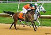 Chndakasexpress winning at Delaware Park on 8/11/16
