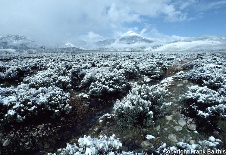 may snow at Great Basin National Park