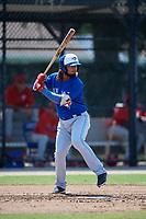 Toronto Blue Jays Ronny Brito (51) at bat during an Instructional League game against the Philadelphia Phillies on September 27, 2019 at Englebert Complex in Dunedin, Florida.  (Mike Janes/Four Seam Images)