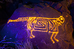 Cougar Petroglyph #2, Three Rivers Petroglyph Site, New Mexico