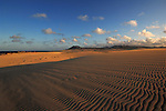 Sand dunes late afternoon, Corralejo, Fuerteventura, Canary Islands, Spain.