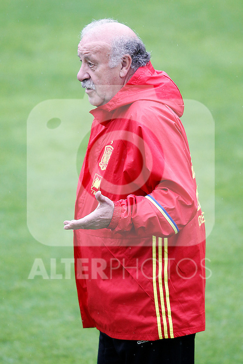 Spain's coach Vicente del Bosque during preparing training stage to Euro 2016. May 30,2016.(ALTERPHOTOS/Acero)