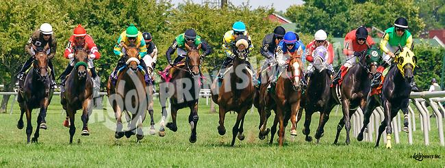 Maddizaskar winning at Delaware Park on 8/10/16
