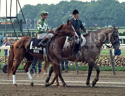 Genuine Risk, 1980 Kentucky Derby winner, at the 1980 Belmont Stakes.  Jacinto Vasquez up.