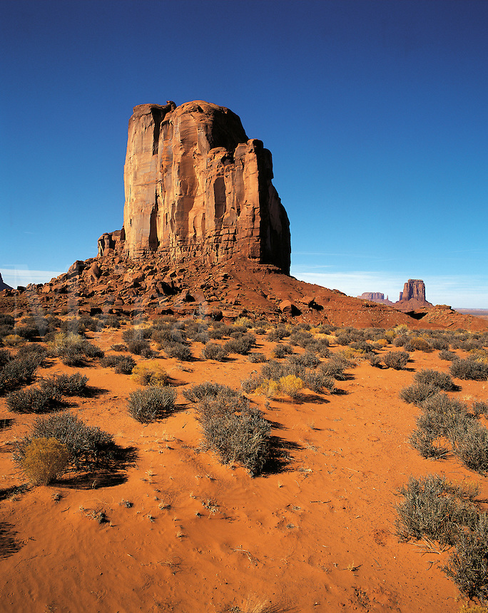 Elephant Butte seen across the desert-floor with thorn-scrub, other buttes in distance, Monument Valley, Utah/Arizona, US