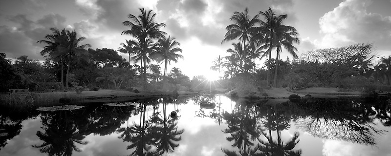 Pond with relfecting palm trees and garden at Na Aina Kai Botanical Gardens. Kauai, Hawaii