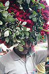 Flowers feature in many ceremonies and celebrations in India. One of the largest flower markets is at Malik Ghat by the Hoogly River in Kolkata. Here a man carries his spiky load to a waiting customer.