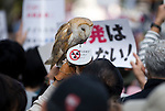A barn owl joins around 4,000 people taking part in a demonstration against nuclear power in Tokyo, Japan on  10 April 20011. .Photographer: Robert Gilhooly