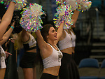Idaho's cheerleaders perform during a women's Big Sky Tournament semi-final game agianst Portland State's at the Reno Events Center on Friday, March 9, 2018 in Reno, Nevada.