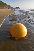 Fishing float ball on beach in stream. Point Reyes National Seashore. California