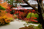 Tenjuan Japanese Temple hall in autumn scenery of a temple garden. Nanzen-ji, Kyoto, Japan 2017 Image © MaximImages, License at https://www.maximimages.com