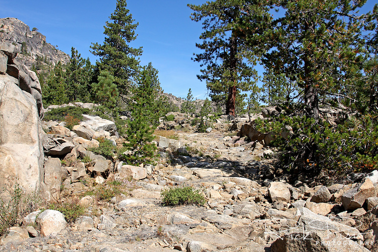 Lincoln Highway roadbed climbs up the east side of  Donner Summit near Truckee, California.