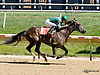 Cosa Dolce winning at Delaware Park racetrack on 7/5/14