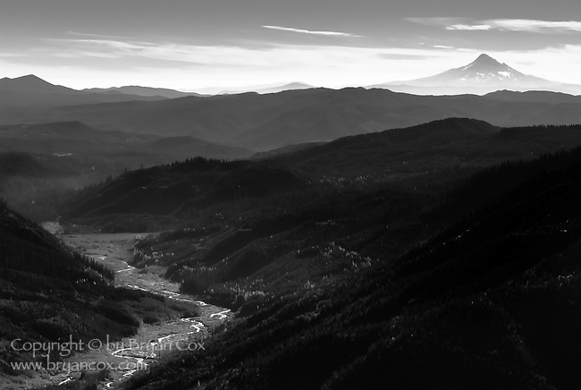 Mount Hood, as seen from Windy Ridge on Mount St. Helens, Gifford Pinchot National Forest