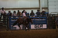 Great American Cowboy Casper_WY