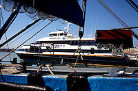 Termoli: il traghetto Termoli jet ormeggiato nel porto. Il traghetto, costruito dalla cantieri navali di Termoli e finanziato dalla regione Molise, è costato 8 milioni di euro, doveva servire a collegare il Molise con la Croazia ma il collegamento non è mai partito.