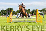 James Cregan jumps the final fence on Lincoln Master at the Killorglin Pony show on Sunday
