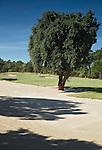 PORTUGAL -  Hole17 . Quinta do Conde- Golfbaan Quinta do Peru Golf & Country Club. COPYRIGHT KOEN SUYK