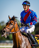 OLDSMAR, FL - MARCH 11: Fifty Five #6, ridden by Jose Ortiz (black hat), after winning the Florida Oaks on Tampa Bay Derby Day at the Tampa Bay Downs on  March 11, 2017 in Oldsmar, Florida. (Photo by Douglas DeFelice/Eclipse Sportswire/Getty Images)