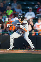 Drew Turbin (9) of the Delmarva Shorebirds squares to bunt against the Hickory Crawdads at L.P. Frans Stadium on June 18, 2016 in Hickory, North Carolina.  The Shorebirds defeated the Crawdads 4-2 in game two of a double-header.  (Brian Westerholt/Four Seam Images)