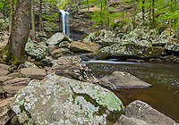 Petit Jean State Park, Arkansas: Cedar Creek Falls in spring hardwood forest