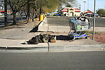 Homeless man sleeping on sidewalk.<br />