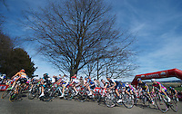 48th Amstel Gold Race 2013..on top of the Gulperberg