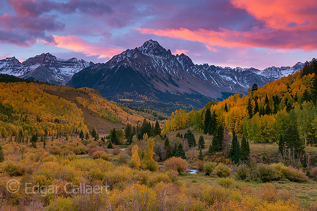 Dawn, Aspen, Mount Sneffels, Dallas Divide, Uncompahgre National Forest, Colorado