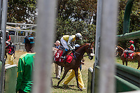 """John Sercombe, center, organizes  the horses before the  start. Sercombe has beenserving as starter at  the races this year. He also  is the course vet. """"where elese but here could the  starter be married to one of the leading trainers,  be the father of a jockey and owner of horses as well as the course vet?"""" he joked. Nairobi, Kenya. March 17, 2013 Photo: Brendan Bannon"""