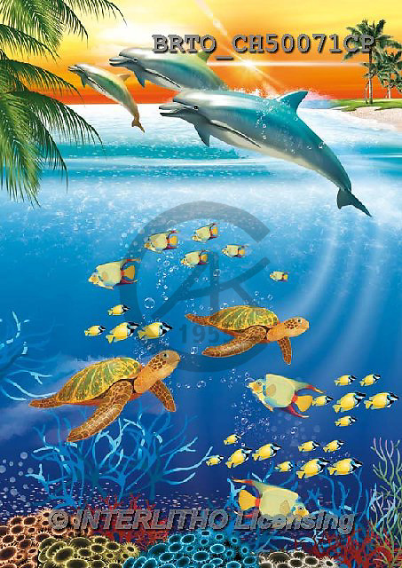 Alfredo, REALISTIC ANIMALS, REALISTISCHE TIERE, ANIMALES REALISTICOS, paintings+++++,BRTOCH50071CP,#A# ,dolphins