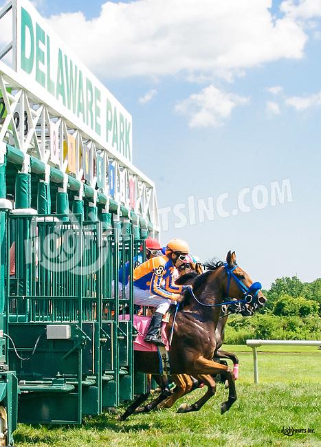C'Mon Boys winning at Delaware Park on 7/21/16