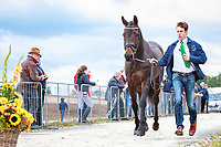 AUS-Christopher Burton with Quality Purdey during the First Horse Inspection. 2017 NED-Military Boekelo CCIO3* FEI Nation Cup Eventing. Wednesday 4 October. Copyright Photo: Libby Law Photography