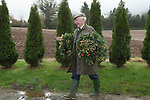 MISTLETOE & HOLLY AUCTION TENBURY WELLS  WORCESTERSHIRE