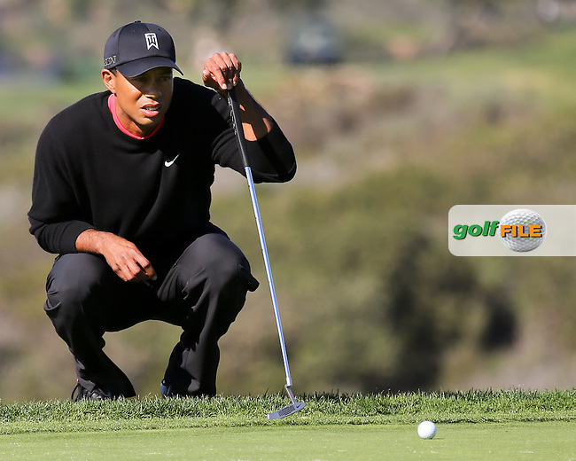 28 JAN 13  Eventual Champion Tiger Woods for birdie on 13 during Sunday's Final Round of The Farmers Insurance Open at Torrey Pines Golf Course in La Jolla, California. (photo:  kenneth e.dennis / kendennisphoto.com)