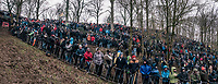 the crowd<br /> <br /> Elite Men's Race<br /> UCI CX Worlds 2018<br /> Valkenburg - The Netherlands
