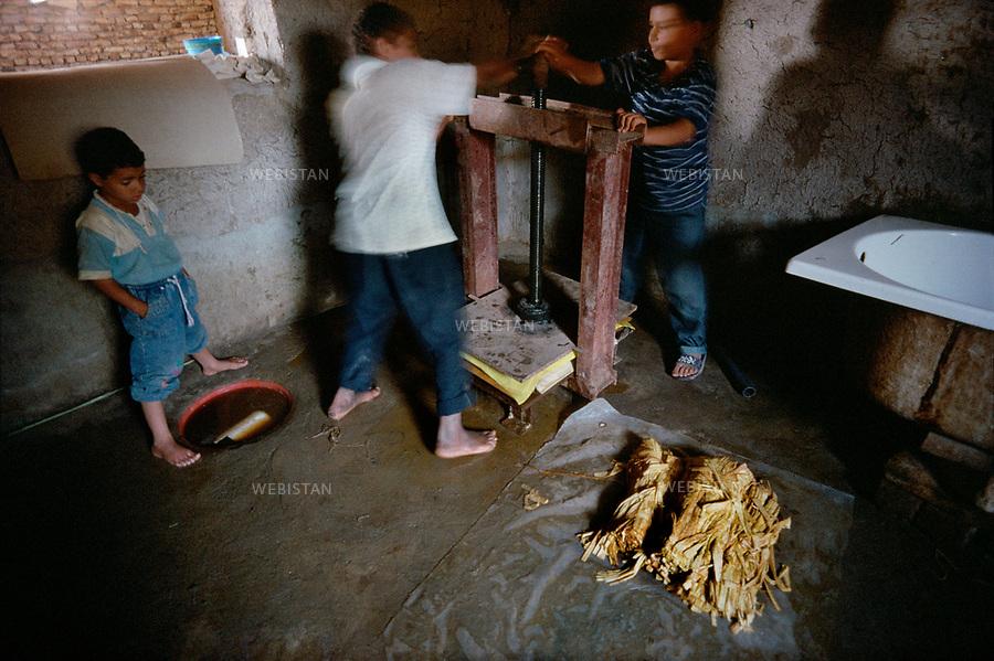 1996. Egypt. Nile delta. El-Qaramus. During the manufacturing process of papyrus paper, a craftsman, helped by two children, presses sheets of papyrus. Egypte. Delta du Nil. El-Qaramus. Lors du processus de fabrication du papier de papyrus, un artisan, avec l'aide de deux enfants, compresse des feuilles de papyrus.