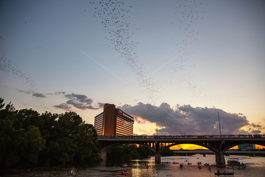The Congress Avenue Bridge spans Lady Bird Lake in downtown Austin and is home to the largest urban bat colony in North America. The colony is estimated at 1.5 million and growing.