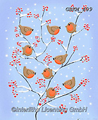 Kate, CHRISTMAS SYMBOLS, WEIHNACHTEN SYMBOLE, NAVIDAD SÍMBOLOS, paintings+++++Robins and berries,GBKM409,#xx#