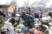 MALI: AGRICULTURE & LANDGRAB