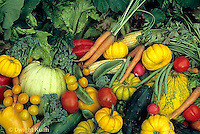 HS52-018a  Variety of harvested vegetables - squash, cucumber, tomato, corn, carrot, tomato, lettuce, broccoli, bean, pepper