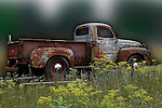 A rust-covered, primed and gray 1951 Ford Pickup regally sits on its trailer hiden by green grass and goldenrod is backdropped by a blurred, green and white background camouflaging the environment at the 2010 Wings 'n' Wheels Showcase, Galway, New York. The door still carries the identify of the T.E. Conklin Brass and Copper Company, established in 1860.