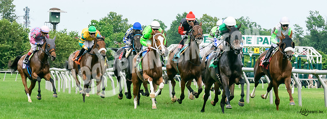 She's Thirsty winning at Delaware Park on 6/8/17