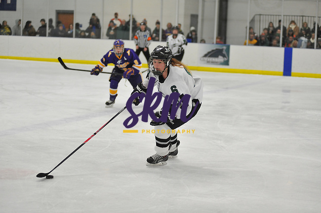 Stevenson University's women's ice hockey team falls 5-0 to Elmira College in front of a packed house Saturday evening at Reisterstown Sportsplex.Stevenson University's women's ice hockey team falls 5-0 to Elmira College in front of a packed house Saturday evening at Reisterstown Sportsplex.