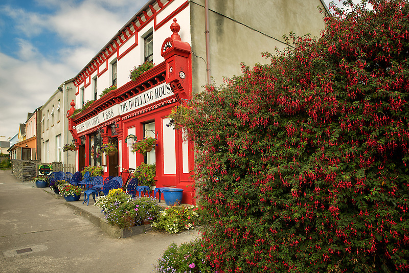 Coffee house/pub, with fuchia flowers. Knightstown,Valentia Island,Republic of Ireland