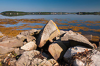 Rocky Shoreline Overlooking Castine, Sheep Island, Castine, Maine, US