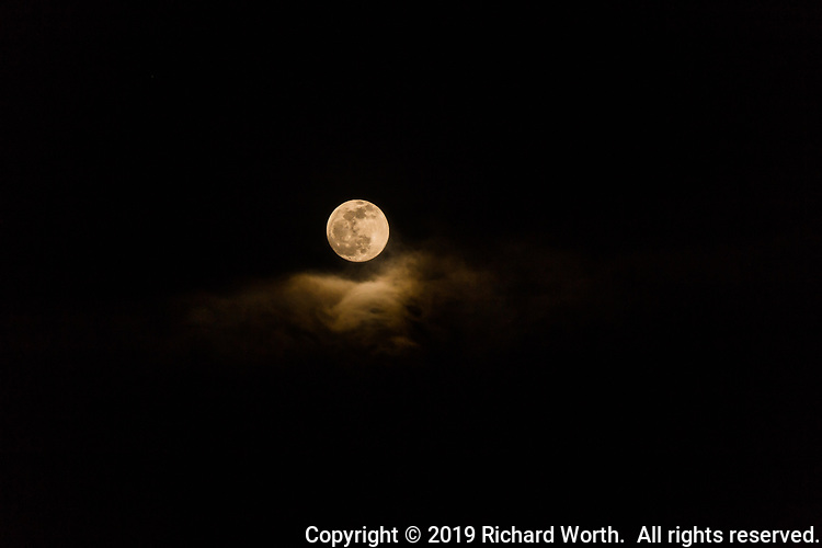 The nearly Full Wolf Moon (about 17 hours early) above wispy clouds viewed from a backyard.  Two images, seconds apart, combined to share a moment in time.